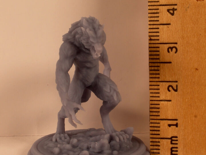 Werewolf Miniature.  High Quality 3D Resin Print
