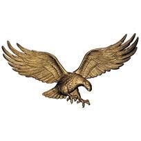 29 Inch Eagle