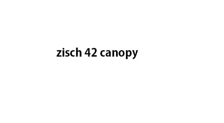 Zisch42 + zisch39 canopy