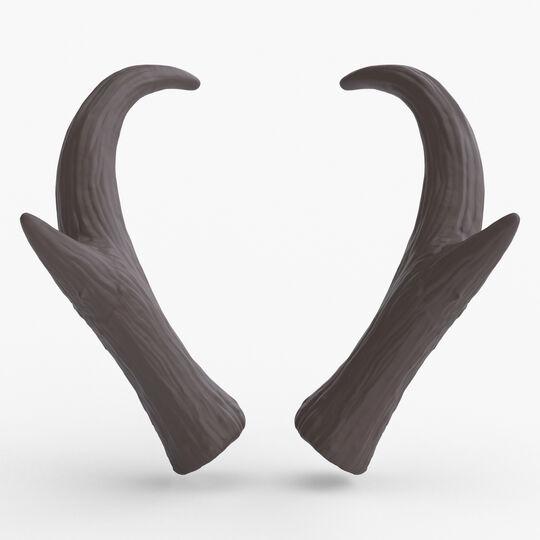 Pronghorn Horns - Sage
