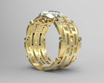 ring 28