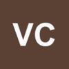 VISIONSENSE CORP Logo