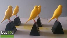 bay3d_canary.jpg
