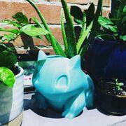 Bulbasaur Pot.jpg