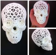 3dadd skull.PNG