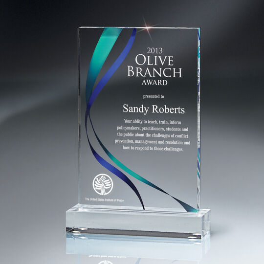 Medium Digi-Color with Ribbon Design Lucite Award