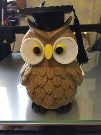 Graduation Wise Owl Maze Gift Box