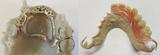 Attenborough 3D printing photo