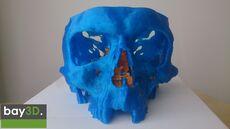 bay3d_skull2.jpg
