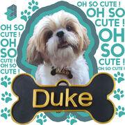 DukeDogTag-2.jpg