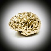 REXROI GOLD.jpg