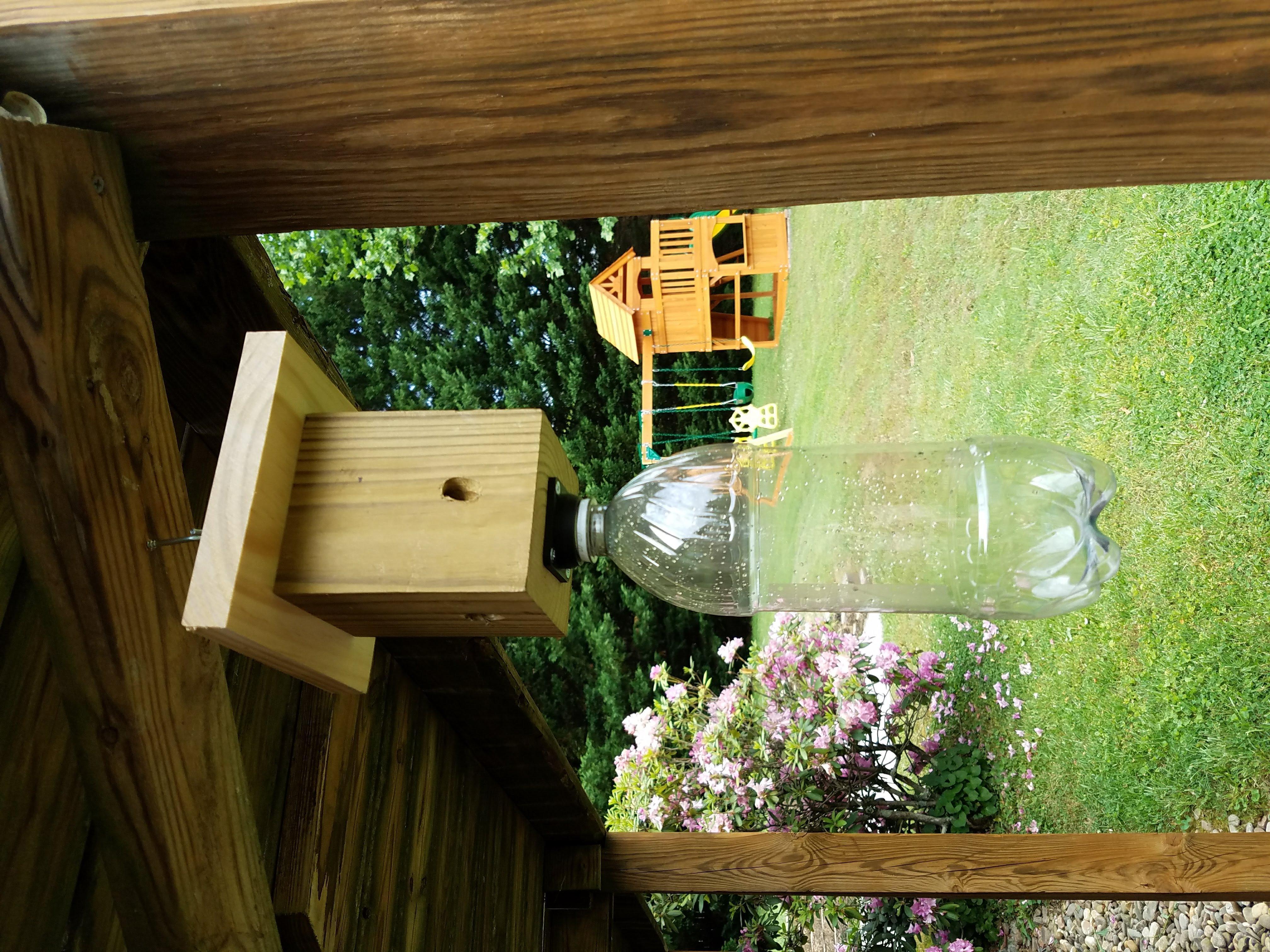 Carpenter Bee Trap - Bottle Flange Only