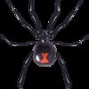 Black Widow Industries Logo