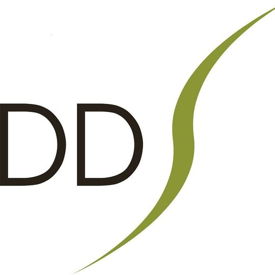DDS Digital Services