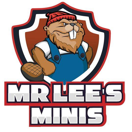 Mr Lee's Minis