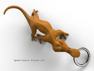 Iguana, keyrings