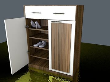 SHOES CABINET 2