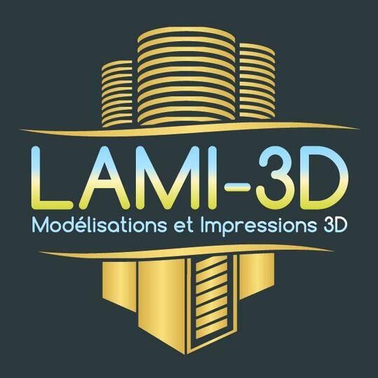 LAMI-3D