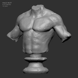 Male Bust Miniature