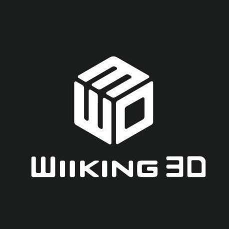 wiiking3d