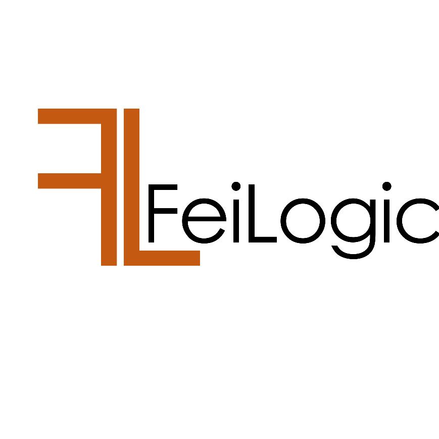 FeiLogic 3D