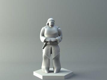 Human - D&D miniature