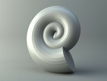 Shell of snail Planorbarius